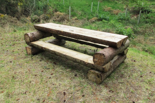 Picnic bench restored