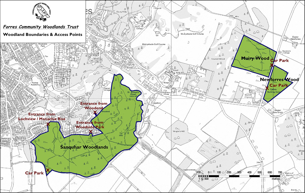 Woodland Boundaries and Access Points